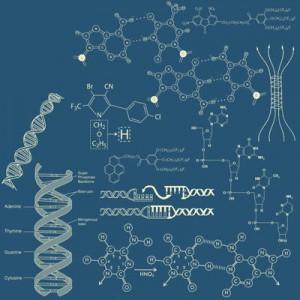 200508chemistry 300x300 Кисть для фотошопа   Векторные химические, биологические формулы