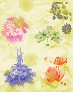 Flowers2 240x300 Кисть для фотошопа   Цифровые букеты