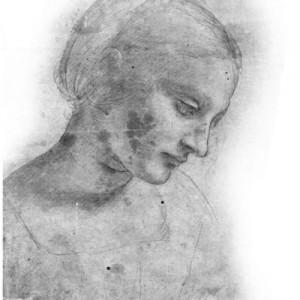 70408da vinchi 300x300 Кисть для фотошопа   Рисунки Леонардо Да Винчи
