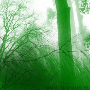 Tranquil 2 Кисть для фотошопа   Трава, деревья, кусты, лес
