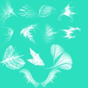 brushes5338 300x300 Кисть для фотошопа   Fractal Wings, узоры